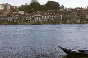 Bodegas-Oporto
