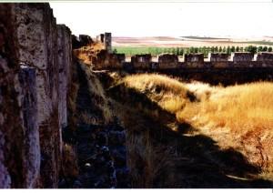 Castillo-Grajal de Campos
