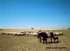 Villlamayor de Campos-foto-Jose Luis Lozano
