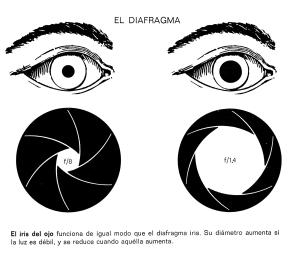abertura diafragma