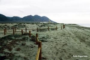 playa junto Cabo de Gata Foto Figaredo Gijón