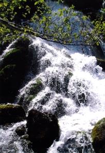 río de montaña asturiana Foto Figaredo Gijón
