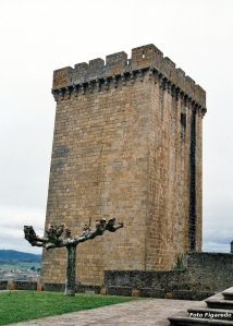 Torre del castillo de Monforte. Foto Figaredo Gijón.