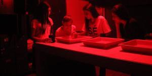 niños en un laboratorio fotográfico