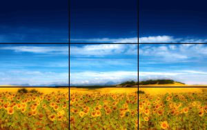 horizonte dividido en tres partes