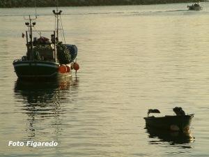 Barcos pesqueros de bajura. Foto Figaredo, Gijón